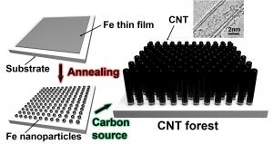 二層カーボンナノチューブの化学気相成長 (chemical vapor deposition of double-walled carbon nanotube)_井上寛隆