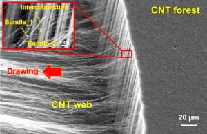 カーボンナノチューブアレイの乾式紡績 (dry spinning of carbon nanotube array)